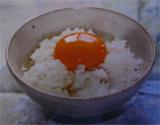 岡崎おうはん地鶏玉子かけご飯